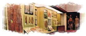 Zona de El Museo Canario dedicada a las vestimentas